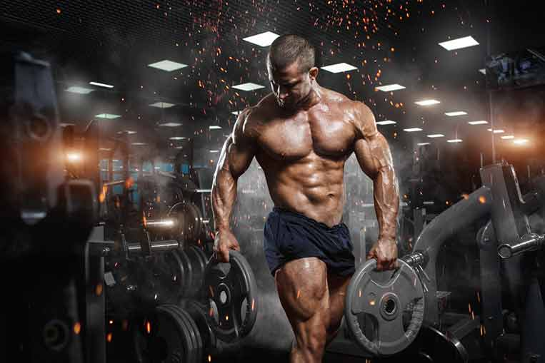 L-Carnitine for Muscle and Performance Enhancement