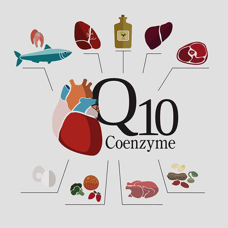 Coenzyme Q10 facts
