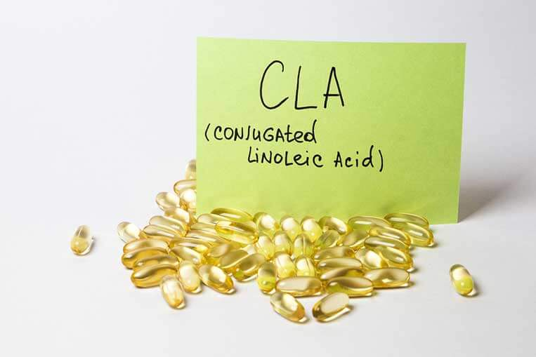 CLA - Conjugated Linoleic Acid facts