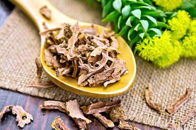 Rhodiola Rosea what does it do