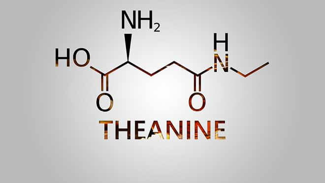 Theanine or L-Theanine