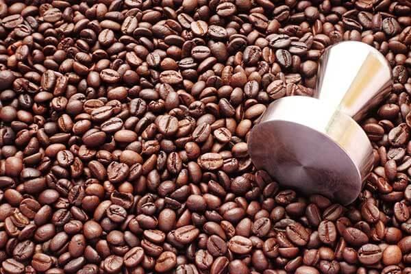 cafeína - granos de café