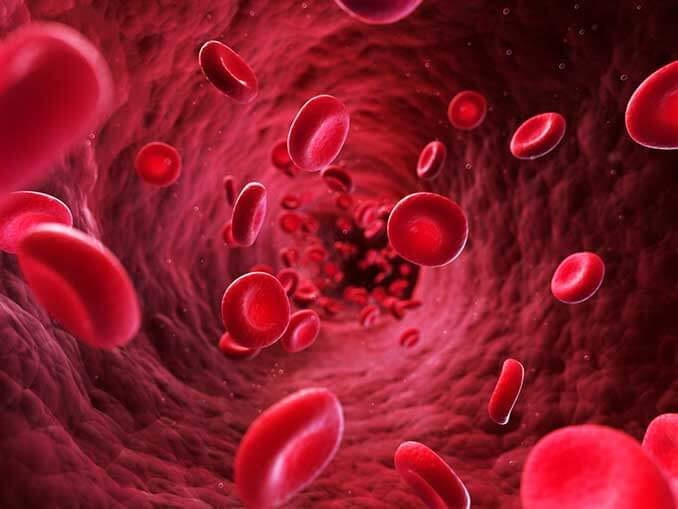 Agmatine for blood flow