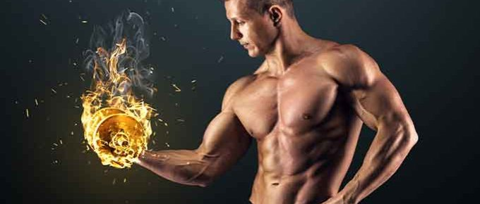Burn fat and keep muscle