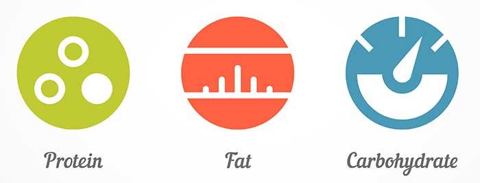 protein fat carbs