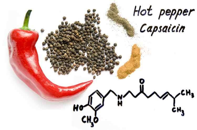 Capsaicin Capsimax red hott chilli pepper