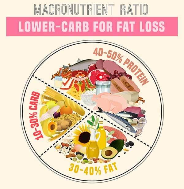 Macronutrient Ratio