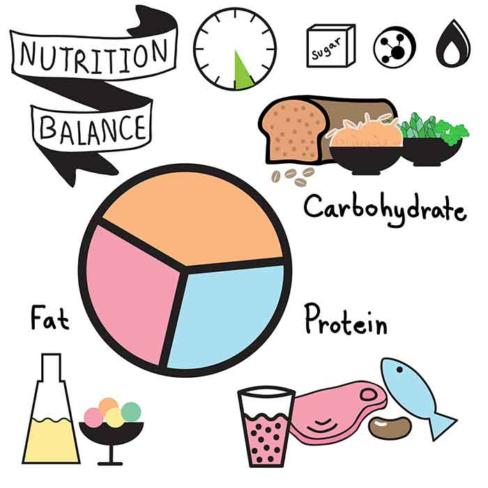 carb Protein and fat