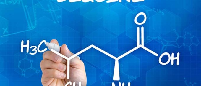 Leucine - what is it