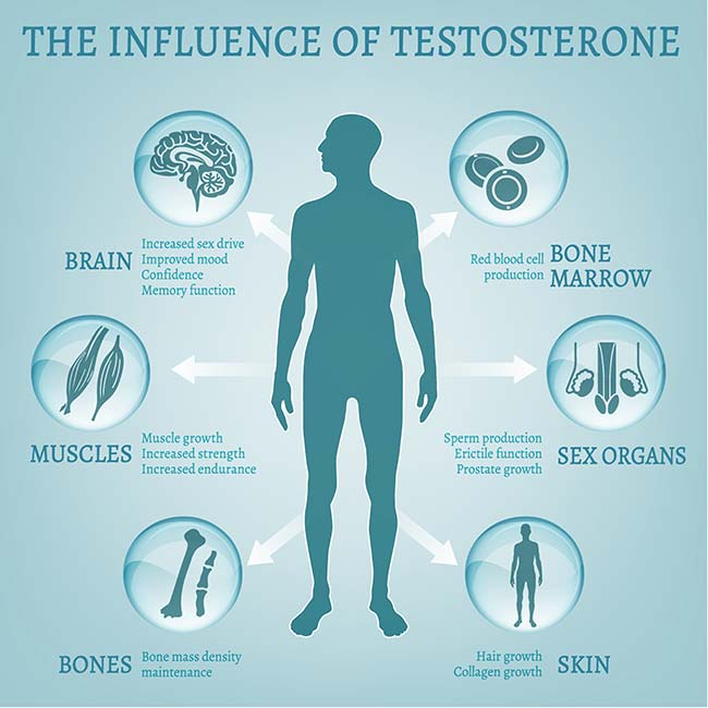 Testosterone levels and T boosting