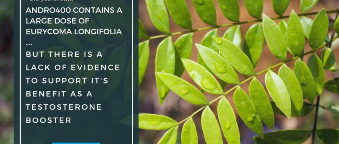 Andro400 E Longifolia