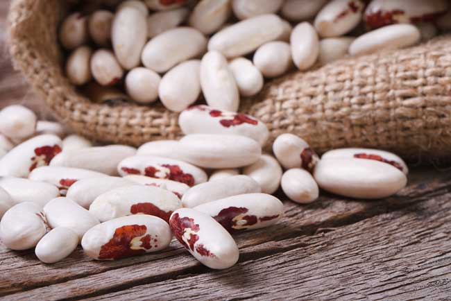 Phytoral White Kidney Bean as a carb blcoker